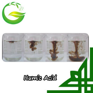 Humic Acid Type Humate Fertilizer Potassium Humate pictures & photos