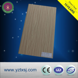 Exterior Wall Designs Easy Install Plastic Wood Composite WPC Panel pictures & photos