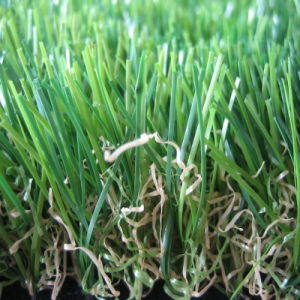 CE Certificated Artificial Turf Factory pictures & photos