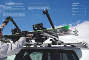 Universal Iron Car Roof Rack (Bt RF311) pictures & photos