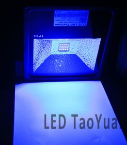 365nm 50W UV Curing Lamp pictures & photos