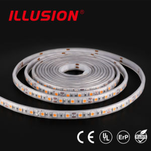 22-24LM/LED SMD5050 60LED/M IP20/IP65/IP68 Silicon LED Strip light pictures & photos