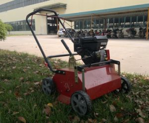 Professional High Quality Garden Power Rake with B&S 6.5HP Engine pictures & photos