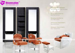 Popular High Quality Salon Furniture Shampoo Barber Salon Chair (P2020A)