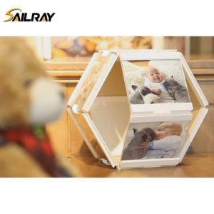 """4""""*4""""Leggy Horse New Style Acrylic PU Photo Frame/Picture Frame for Home Decoration (10 piece set) pictures & photos"""