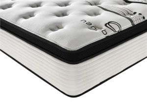 New Arrival Memory Foam 5 Star Hotel Mattress pictures & photos