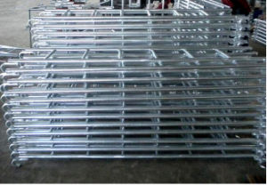 High Quality Scaffold Ladder for Sale pictures & photos