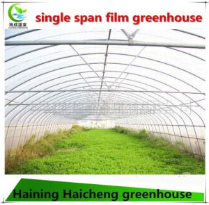 The Cheapest Commercial Greenhouse for Sale pictures & photos