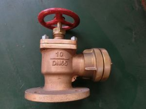 Filling Machine Manufacturer Stainless Steel Globe Check Valve pictures & photos