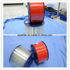 3m PTFE Hose with Fittings pictures & photos