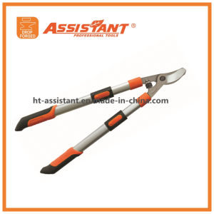 Green Lopping Shears PTFE Coated Leverage Compound Action Bypass Loppers pictures & photos