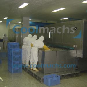 Air Blast IQF Tunnel Freezer for Seafood Prepared Food Vegetable Fruit pictures & photos