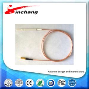 Lband Internal Antenna pictures & photos