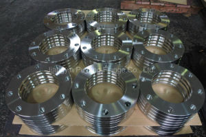En 1092-1 Forged 1.4404/1.4437 Stainless Steel Plate Flange pictures & photos