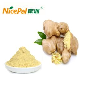 Pure Natural Dired Ginger Powder for Beverage Food/Drink Powder/Hot Drink/Seasoning pictures & photos