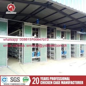 Factory Price H Type Battery Layer & Broiler Chicken Cage pictures & photos