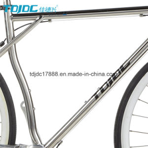 No Maintain Sport Bike/700c Aluminium Alloy Fork Bicycle/Silver Road Bike pictures & photos
