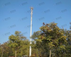 Self Support Single Tube Telecommunication Tower pictures & photos