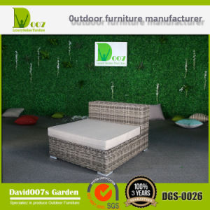 Garden Sectional Wicker Sofa Set Rattan Outdoor Furniture pictures & photos