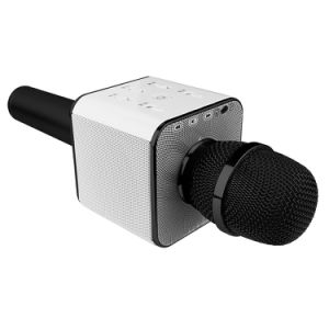 1 to 2 Wireless Bluetooth Microphone pictures & photos
