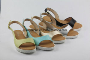 New Design Colorful Lady Shoes Flat Sandal for Fashion pictures & photos