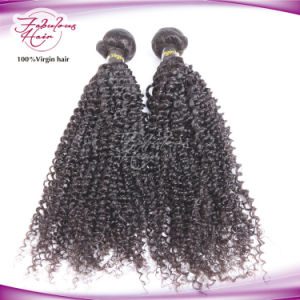 Peruvian Virgin Hair Afro Look Kinky Curly Hair Weaves pictures & photos