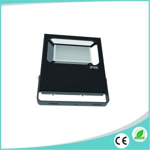 Good Price for LED Flood Light 100W IP66 pictures & photos
