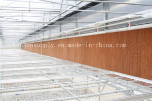 Honey Comb Cellulose Evaporative Water Cooling Pad Greenhouse Air Cooling Pad pictures & photos