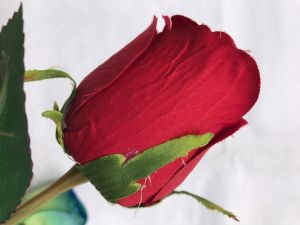 Real Touch Rose Fresh Artificial Silk Flowers Home Decorations for Wedding Party or Birthday pictures & photos