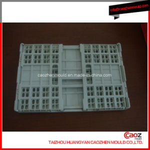 Plastic Injection Turn Over Box /Folding Crate Mould pictures & photos