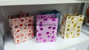 Paper Boutique Bag pictures & photos