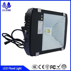 220V 10 Watt DMX RGB Outdoor LED Flood Light Waterproof IP66 pictures & photos