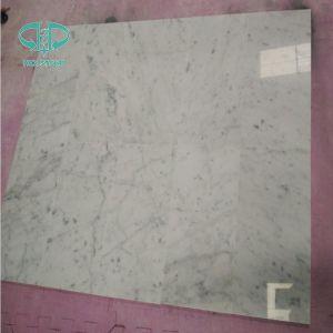 Bianco Carrara White, White Marble Slabs, Pure White Marble pictures & photos