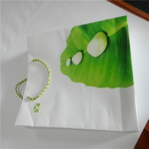 Rich Mineral Paper Recyclable Stone Paper pictures & photos