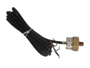 Atlas Copco Industrial Spare Parts Temperature Sensor 1089962501 Air Compressor pictures & photos