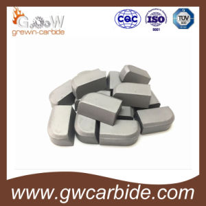 Special Shape and Size Brazed Tips of Tungsten Carbide pictures & photos