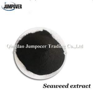 100% Water Soluble Seaweed Extract pictures & photos