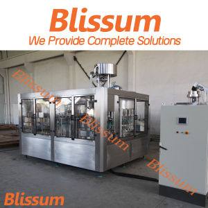 2017 Blissum Automatic 3L-10L Pet Bottle Water Filling Machine pictures & photos
