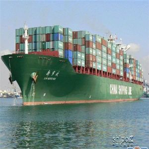Container Shipping From China to Fremantle, Australia pictures & photos
