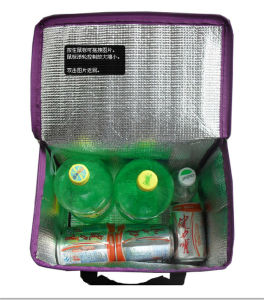 Promotional Eco Friendly Bag Cooler (MECO463) pictures & photos