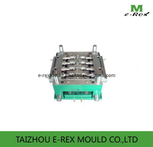 Multy Cavity Pipe Fitting Mould/Plastic Mold (E32)