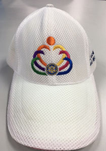 Cap with Embroidered Design/Logo pictures & photos