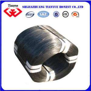 Q195 Metal Black Iron Wire (TYB-0077) pictures & photos