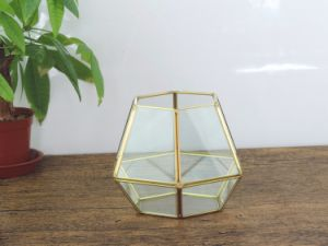 Glass Geometric Succulent Planter Vase Pot Terrarium Container pictures & photos
