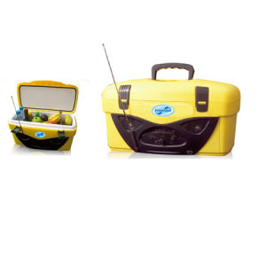 Cooler Box with Radio (BW-14L) pictures & photos