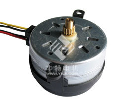 49TYD-TL Reversible Synchronous Motor