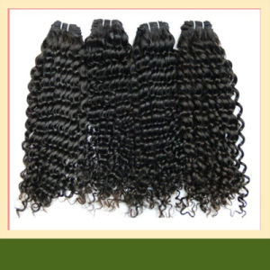 Deep Curly Brazilian Hair Virgin Brazilian Human Hair Extensions pictures & photos