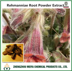 Tranditional Chinese Medicine Ingredient Rehmanniae Root Powder Extract with 30% Polysaccharides pictures & photos