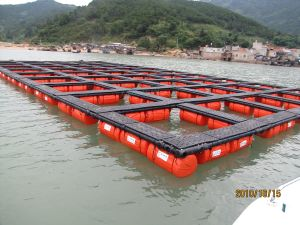 Aquaculture Cage System pictures & photos