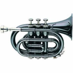 Wind Instruments (6500BK-1)